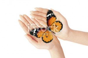 stock-photo-9974986-hands-holding-butterfly